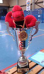 AVC-Europapokal